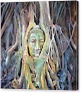 Buddha Head In Tree Roots Canvas Print