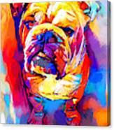Bulldog 4 Canvas Print