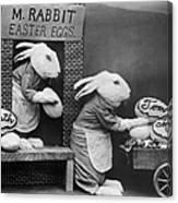 Bunny Business Canvas Print