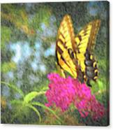 Butterfly Likeness  Canvas Print