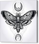 Butterfly - Vector Canvas Print