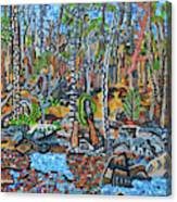 Cade's Land Trail Along The Eno Canvas Print