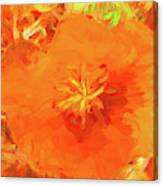 California Poppy Inside Canvas Print
