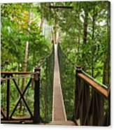 Canopy Walkway. Taman Negara National Canvas Print