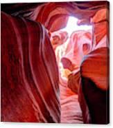 Canyon X Canvas Print