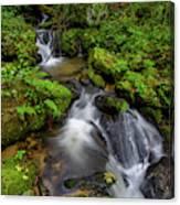 Cascades Of Lee Falls Canvas Print