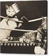 Cat Fight Canvas Print