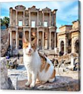 Cat In Front Of The Library Of Celsus Canvas Print