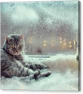 Cat In The Winter Window Canvas Print