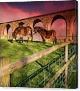 Cefn Viaduct Horses At Sunset Canvas Print