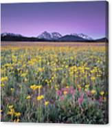 Central Idaho Color Canvas Print