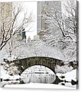 Central Park, New York Canvas Print