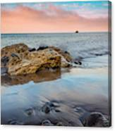 Channel Islands National Park Vii Canvas Print