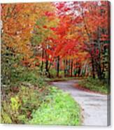 Chikanishing Road In Fall Canvas Print