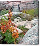 Chikanishing Trail Boardwalk Canvas Print