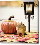 Chipmunk In The Autumn Canvas Print