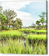 Chisolm Island - Marsh At Low Tide Canvas Print