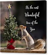 Christmas Squirrel Most Wonderful Time Of The Year Square Canvas Print