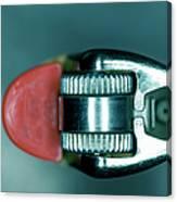 Cigarette Lighter, Close-up Canvas Print
