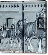 Clydesdale Mural Canvas Print