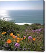 Coastal Bouquet Canvas Print