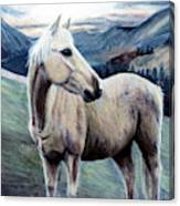 Cochise Canvas Print