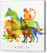 Color Animals ,horse, Wolf, Monkey Canvas Print