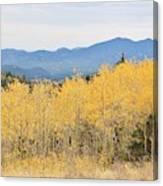 Colorado Autumn In The Mountains Canvas Print