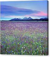 Colorful Mountain Spring Canvas Print