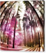 Colorful Trees V Canvas Print