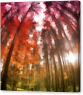 Colorful Trees Vii Canvas Print