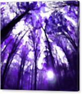 Colorful Trees X Canvas Print