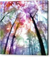 Colorful Trees Xiii Canvas Print