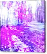 Colorful Trees Xv Canvas Print