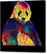 Cool Panda Little Bear Australia Animal Color Design Canvas Print