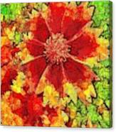 Coreopsis Abstract Canvas Print