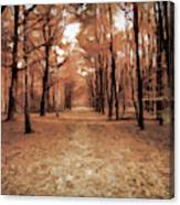 Covered Path Canvas Print