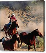 Cowboy Roping Horses Canvas Print