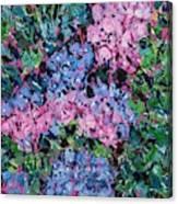Cozy Hydrangeas Canvas Print