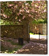 Crichton Church Entrance Gate And Tree In Pink Bloom Canvas Print