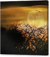 Crows Nest Full Moon Canvas Print