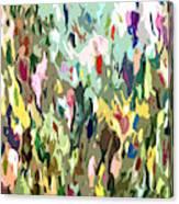 Curious Display Canvas Print