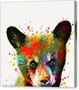 Cute Baby Bear Canvas Print