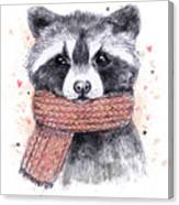 Cute Raccoon With Scarf , Sketchy Canvas Print