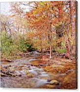 Cypress Creek As It Exits Blue Hole Regional Park In Wimberley, Hays County Texas Hill Country Canvas Print