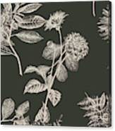 Dark Botanics  Canvas Print