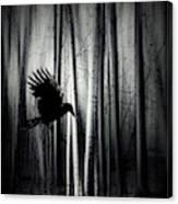 Darker - Raven Canvas Print