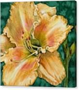 Daylily O Canvas Print