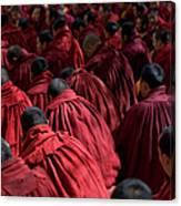 Debating Monks Canvas Print