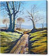 Deciduous Trees Canvas Print